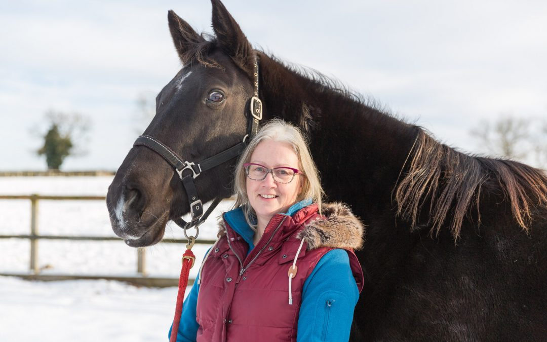 Kalle's story – introducing the equine team