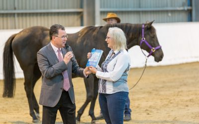Book Launch with Horses